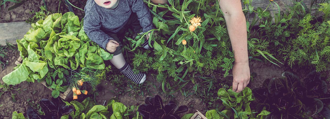 Milieutips voor thuis: zo wordt jouw huishouden duurzamer